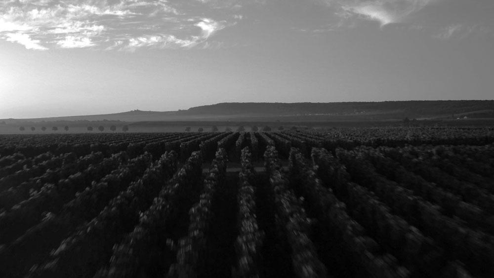 HINTER DEN KULISSEN VON ARMAND DE BRIGNAC - Armand de Brignac Champagne